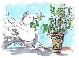 La colomba dell'ulivo (Armando Sodano)